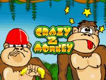 Crazy Monkey 2 на зеркале клуба