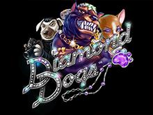 Diamond Dogs - автоматы на деньги